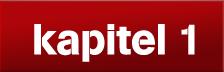 logo_kapitel1